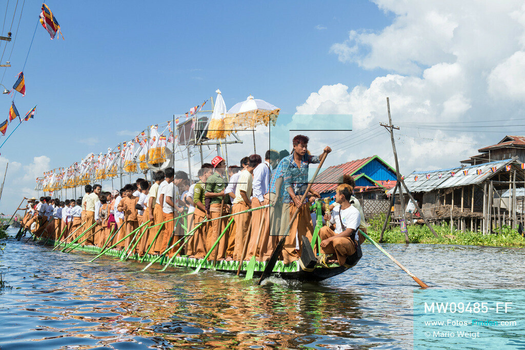MW09485-FF   Myanmar   Nyaung Shwe   Reportage: Phaung Daw U Fest   Während der großen Bootsprozession ziehen die berühmten Einbeinruderer die königliche Barke Shwe Hintha mit den vier goldenen Buddha-Statuen von Dorf zu Dorf auf dem Inle-See.  ** Feindaten bitte anfragen bei Mario Weigt Photography, info@asia-stories.com **