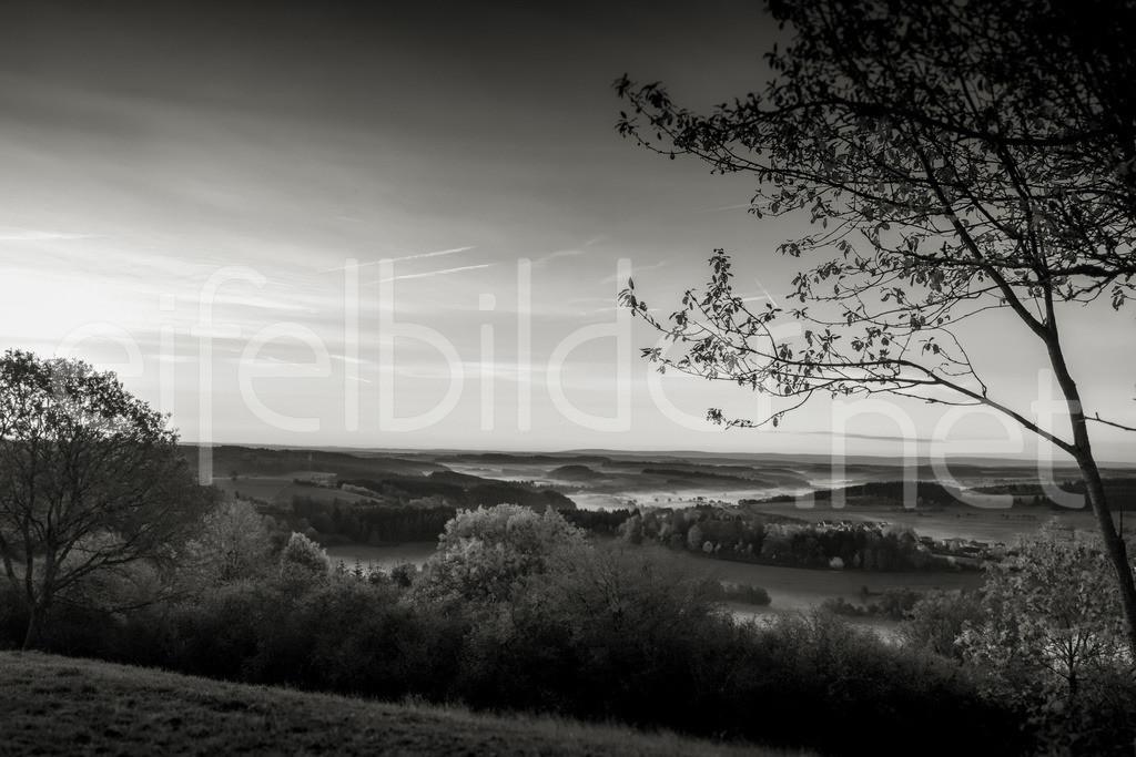 Eifellandschaft in schwarz-weiß | Morgennebel in den Tälern, fotografiert in Daun, Vulkaneifel
