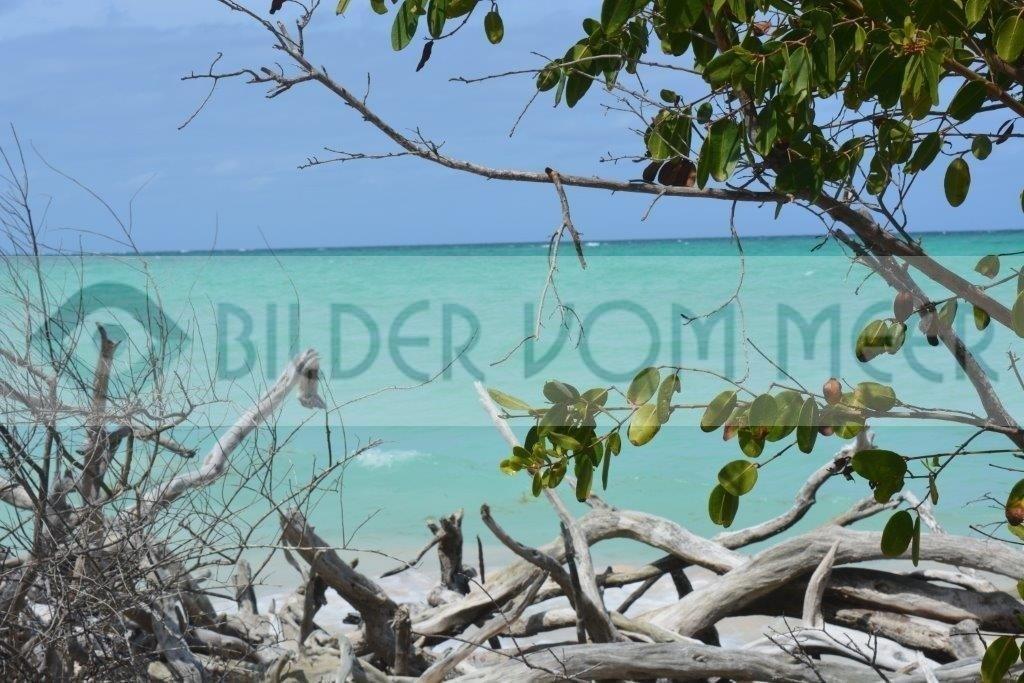 Bilder vom Meer Karibik   Blick von der Insel Cayo Jutías aufs Meer
