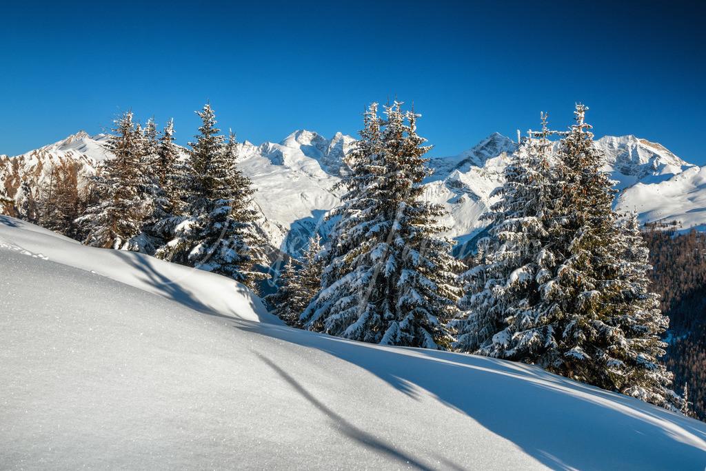 Tiroler Winter | Winter Wunderland