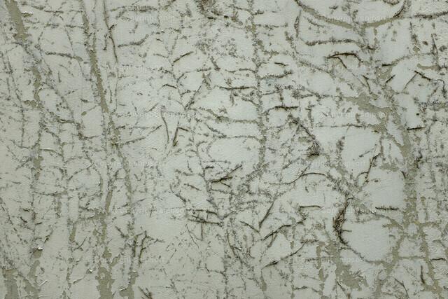 Abgeblätterter Hausanstrich | Abgeblätterter Putz und Spuren von Efeu am Putz einer alten Hausfassade.