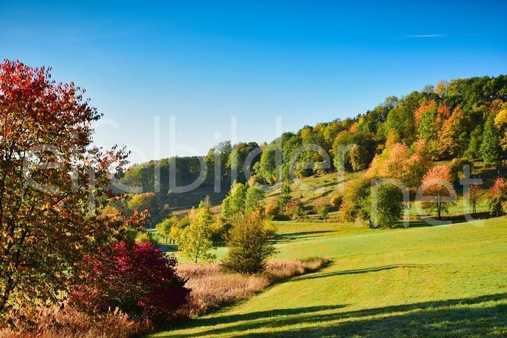 Herbstleuchten in Daun Schalkenmehren | ... fast wie der Indian Summer - so bunt kann der Herbst in der Vulkaneifel sein.