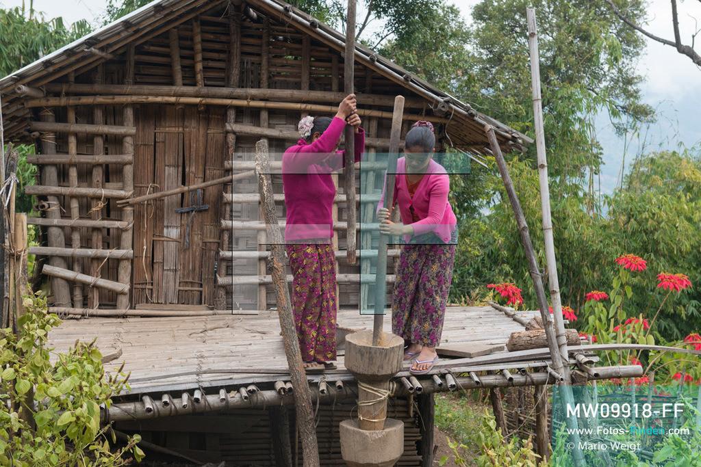 MW09918-FF | Myanmar | Mindat | Reportage: Mindat im Chin State | Junge Frauen der Muun-Ethnie, eine Untergruppe der Chin, stampfen Hirse im Bergdorf Loute Pe. Hirse wird zum Kochen und zur Bierherstellung verwendet. Wie bei vielen Bergvölkern Myanmars erfreut sich Hirsebier großer Beliebtheit.   ** Feindaten bitte anfragen bei Mario Weigt Photography, info@asia-stories.com **