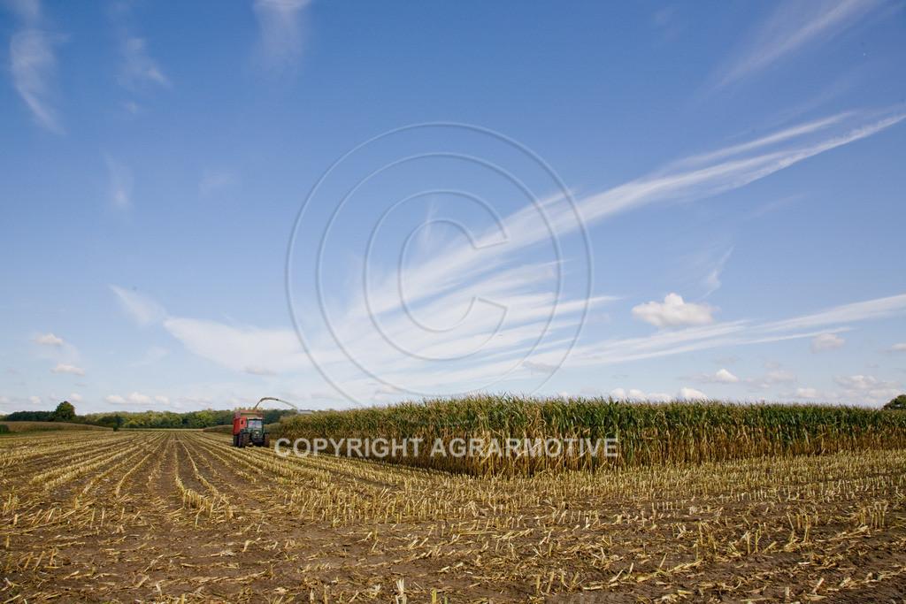 20080914-IMG_8952 | Silomais wird gehäckselt - AGRARFOTO Bilder aus der Landwirtschaft