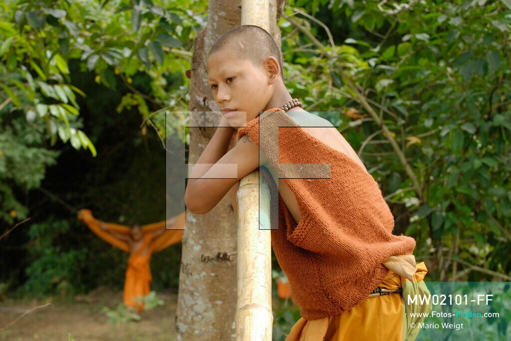MW02101-FF | Thailand | Goldenes Dreieck | Reportage: Buddhas Ranch im Dschungel | Der junge Mönch Pansaen im Kloster  ** Feindaten bitte anfragen bei Mario Weigt Photography, info@asia-stories.com **