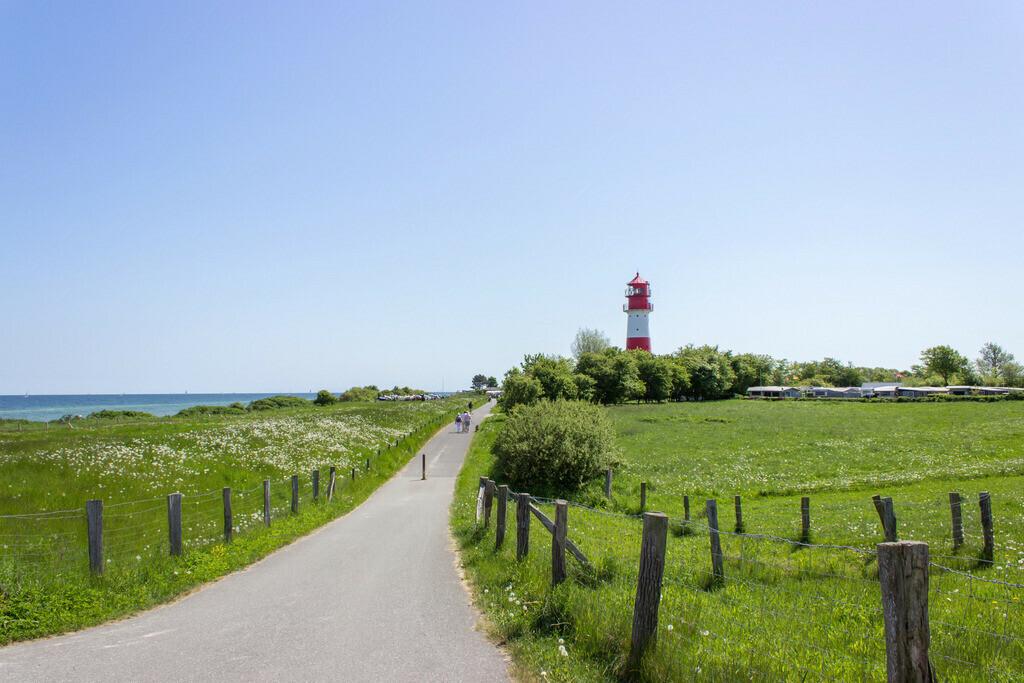 Frühling an der Ostsee | Straße zum Leuchtturm in Falshöft im Frühling