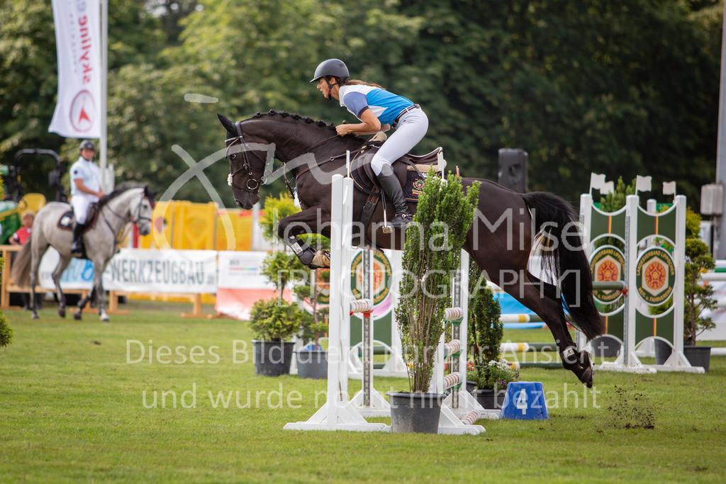 190719_LC_SprPf-A-013   Lopshorn Classics 2019 Springpferdeprüfung Kl. A** 4-5 jährige Pferde