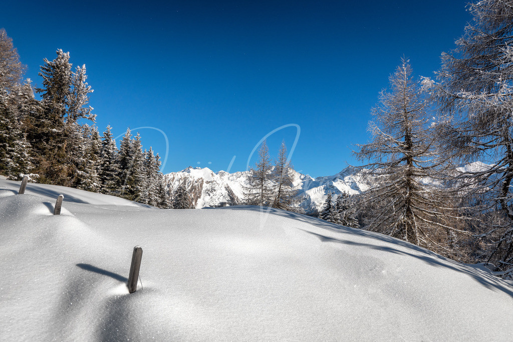 Winter | Traumhafter Winter in Tirol