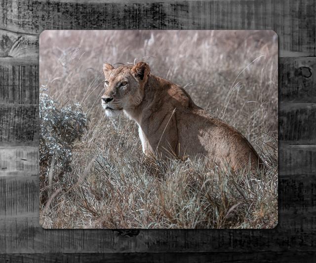 LADY | Kenya