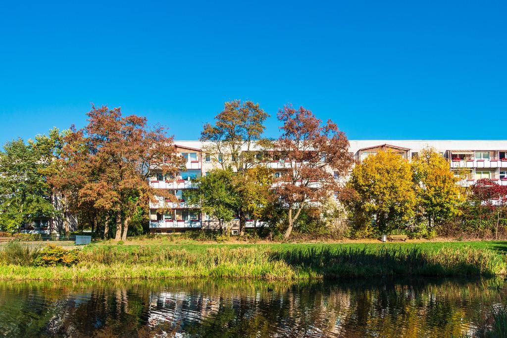 Herbstlich gefärbte Bäume mit blauen Himmel   Herbstlich gefärbte Bäume mit blauen Himmel.