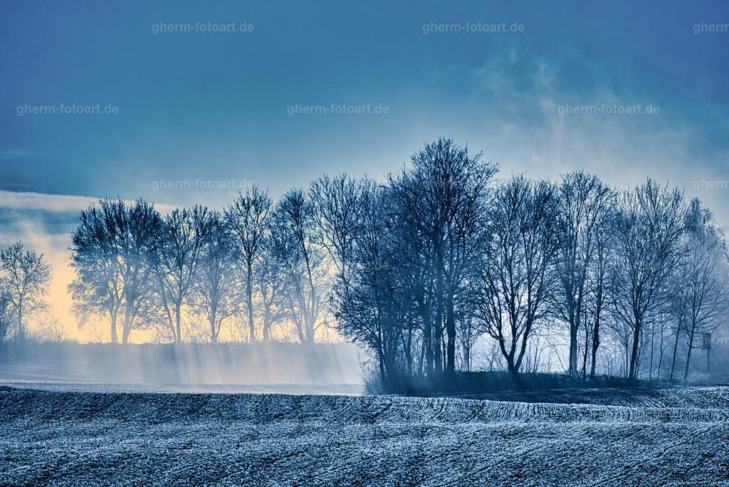 Dezember-Morgen bei Steinhausen