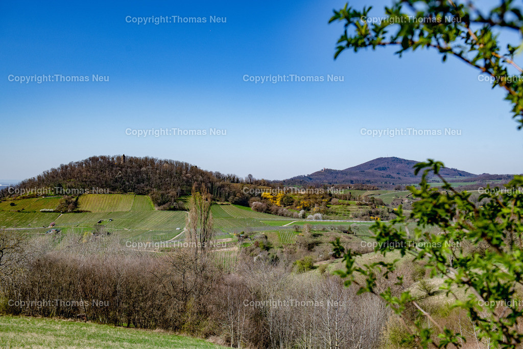 DSC_5941 | Die Bergstrasse mit Blick auf den Hemsberg mit Hemsbergturm, im Hintergrund kann man das BbLaue Türmchen und das Auerbacher Schloss sehen, der Melibikus schließt die Hügelkette ab, ,, Bild: Thomas Neu