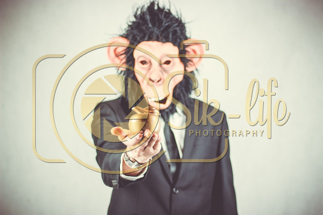 Monkeyman 6