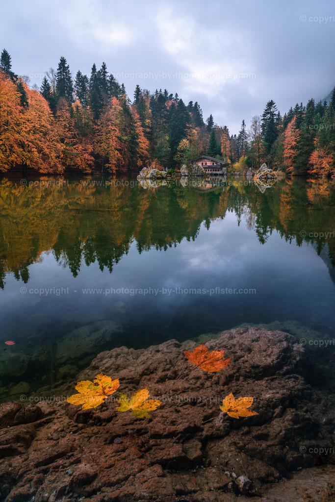 Berglsteiner See Herbst-1