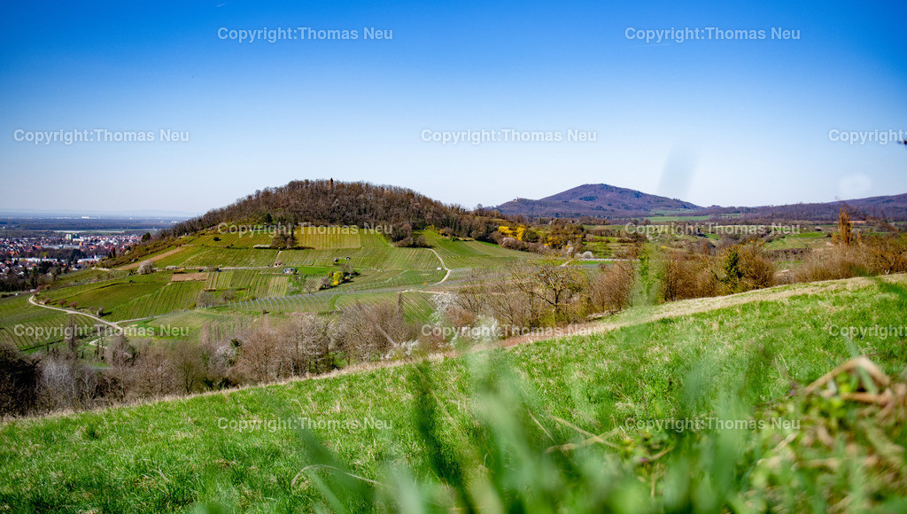DSC_5955 | Die Bergstrasse mit Blick auf den Hemsberg mit Hemsbergturm, im Hintergrund kann man das BbLaue Türmchen und das Auerbacher Schloss sehen, der Melibikus schließt die Hügelkette ab, ,, Bild: Thomas Neu