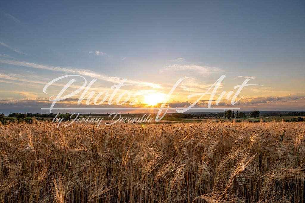Sonnenuntergang Abbenrode