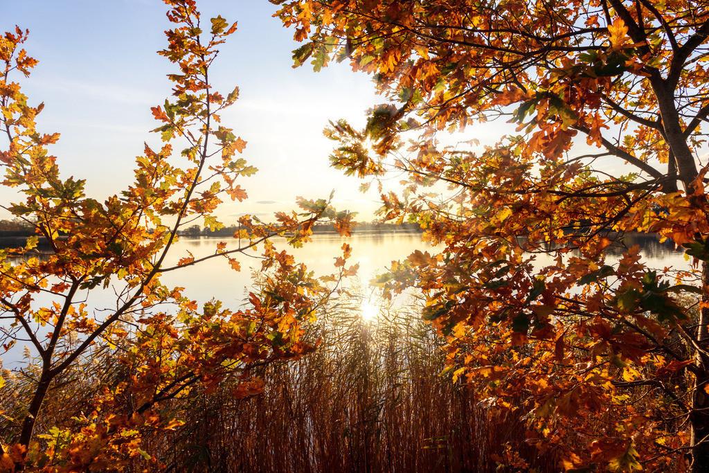 Lindaunis an der Schlei   Herbst in Lindaunis an der Schlei