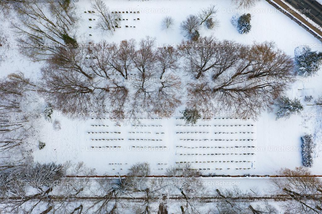 10049-51260 - Halberstadt _ Jüdischer Friedhof