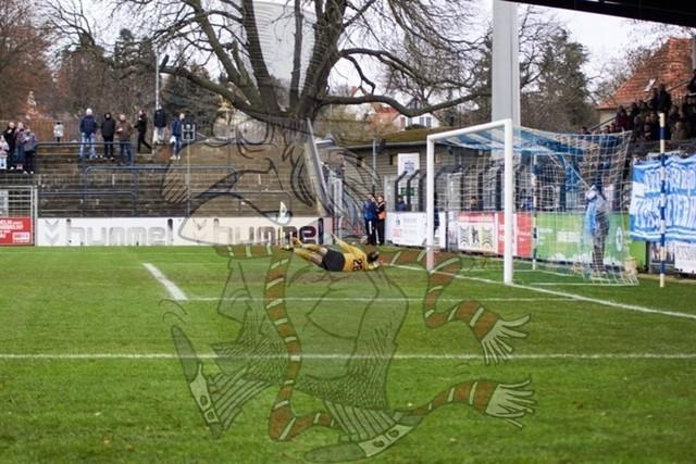 SV Babelsberg 03 vs. BFC Dynamo 052
