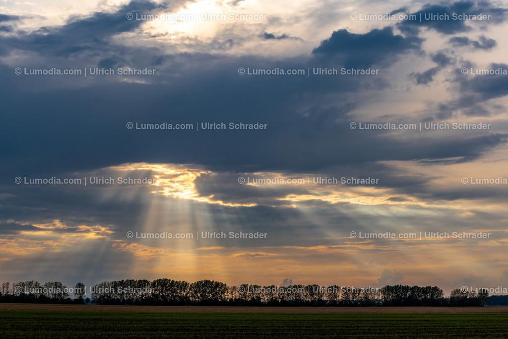 10049-11220 - Landschaft bei Eilenstedt | max. Auflösung 8256 x 5504