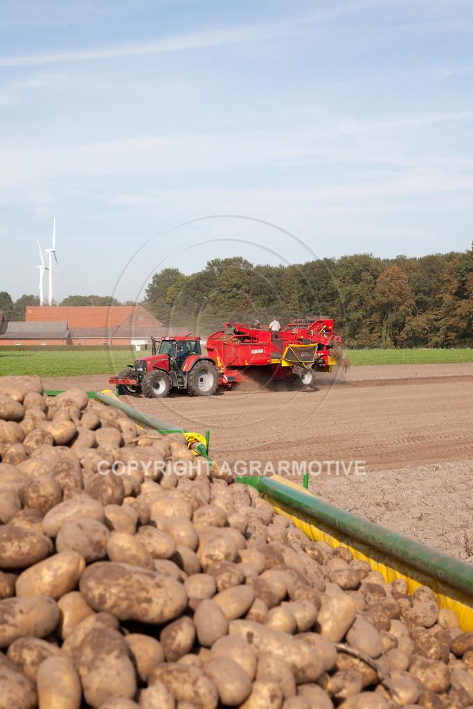 20110929-IMG_5958 | Ernte auf einem Kartoffelfeld - AGRARBILDER