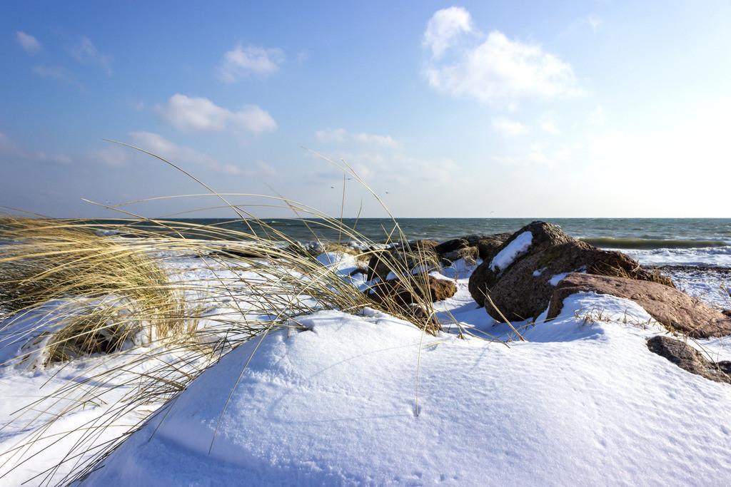 Strand in Schönhagen | Strandhafer und Schnee am Strand in Schönhagen