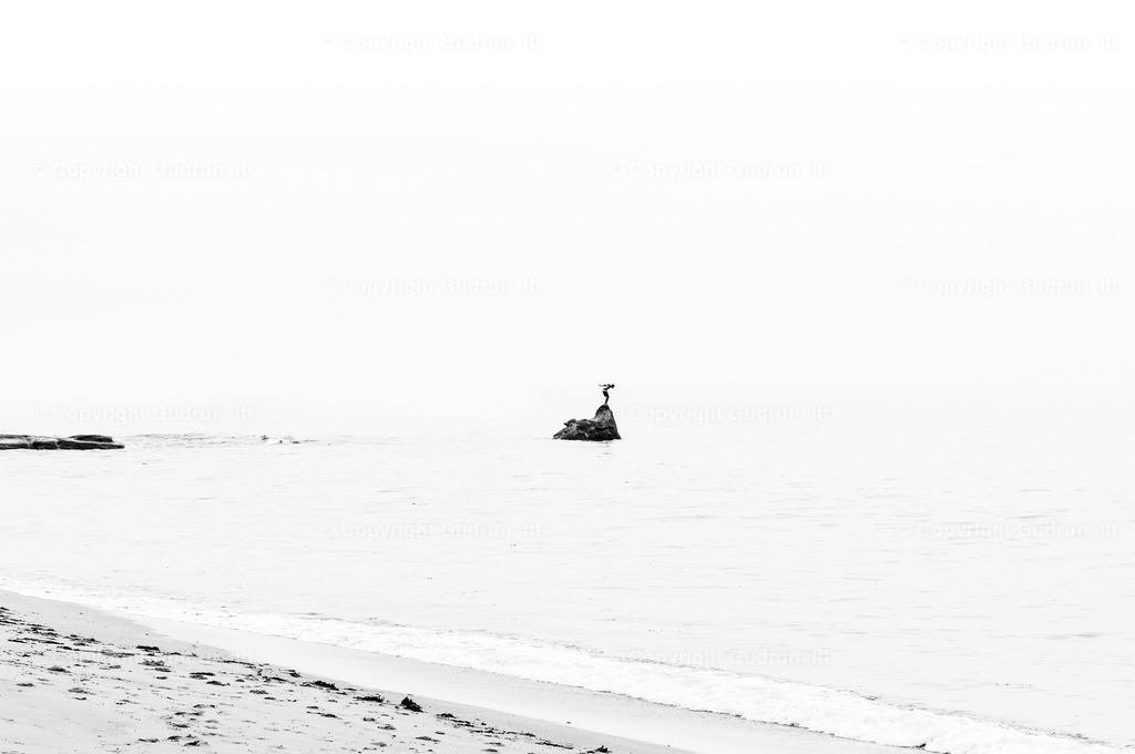 Badender | Landschaftsfotografie in Schwarz Weiß in der Bretagne