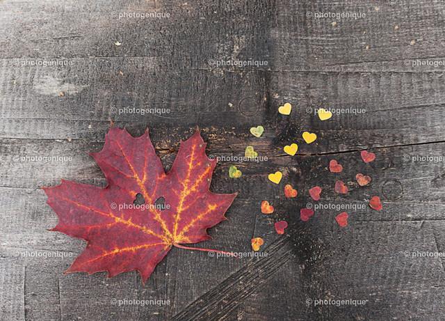 Herbst-Konfetti | Rotes Laub Blatt mit Konfetti-Herzen auf Holz bei Tageslicht