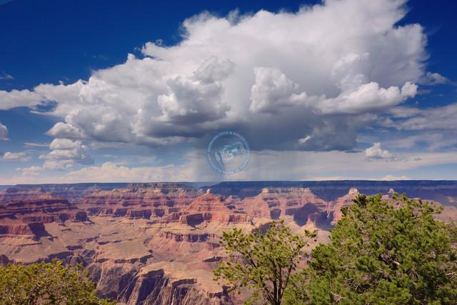 Arizona Grand Canyon National Park   USA, Arizona, 07.08.2012, Arizona Grand Canyon National Park, © 2012 Christoph Hermann, Bild-Kunst Urheber 707707