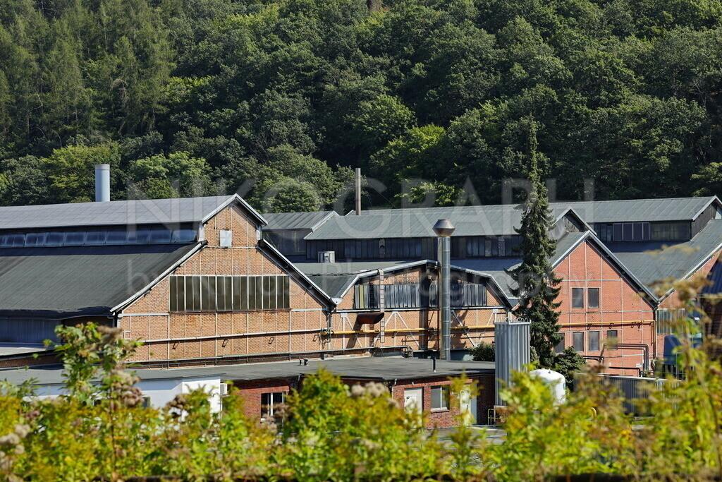 Fabrik | Eine Fabrik, umgeben von den Bäumen des Waldes. Die Photographie visualisiert das Spannungsfeld zwischen Natur und Industrie.
