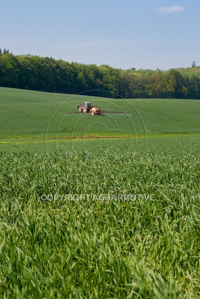 20130516-_MG_9788 | Feldspritze im Weizenfeld - AGRAFOTO Bildagentur