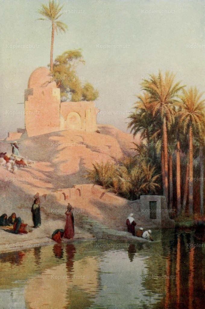 Kelly_ Robert Talbot (1861-1934) - Egypt 1903 - In the oasis of Fayum