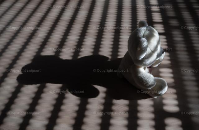 Kindesmissbrauch | Ein einsamer Plüschbeer mit langem Schatten als Konzept für Kindesmissbrauch.