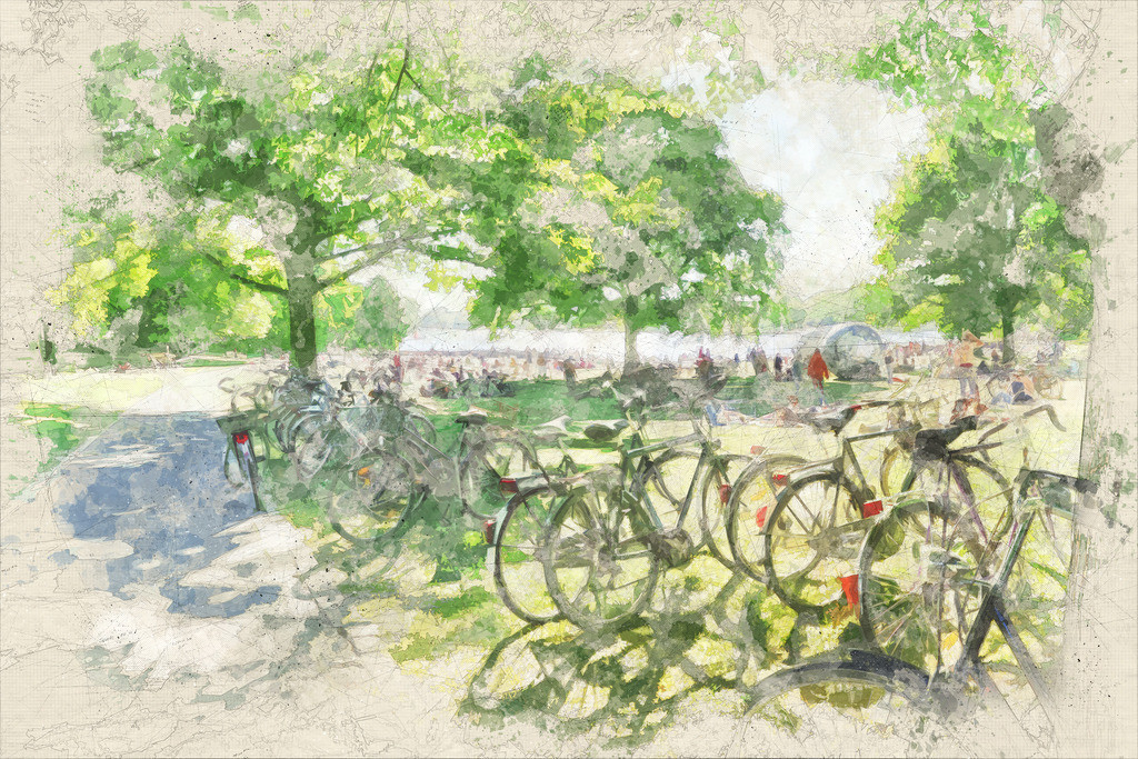 Münster - Aaseewiesen mit Fahrrädern im Sommer | Münster - Aaseewiesen mit Fahrrädern im Sommer