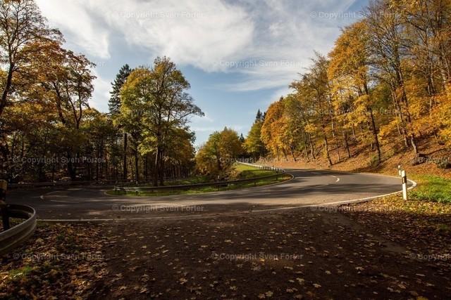 Herbst_thueringerWald-01207