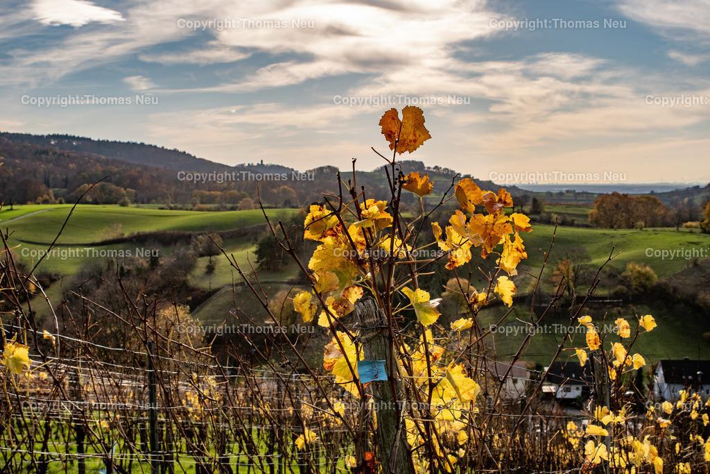 DSC_5384   bbe,Bensheim, Herbststimmung oberhalb von Gronau, Herbst, Herbstfärbung, November, , Blick in Richtung Starkenburg, , Bild: Thomas Neu
