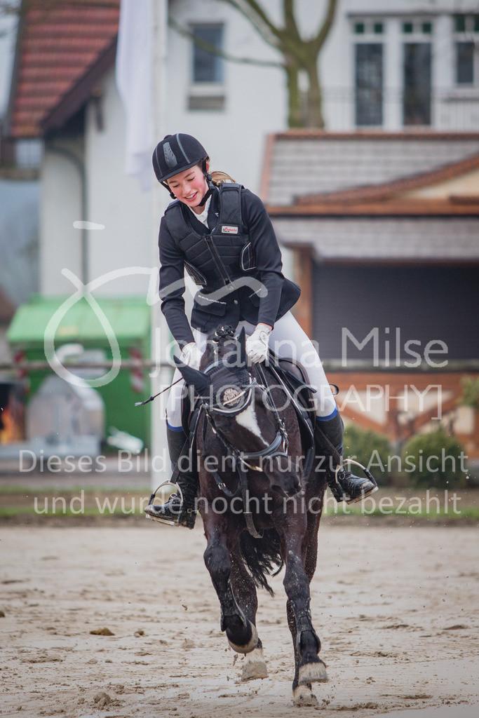 190406_Frühlingsfest_StilE-008   Frühlingsfest der Pferde 2019, von Lützow Herford, Stil-WB mit erlaubter Zeit