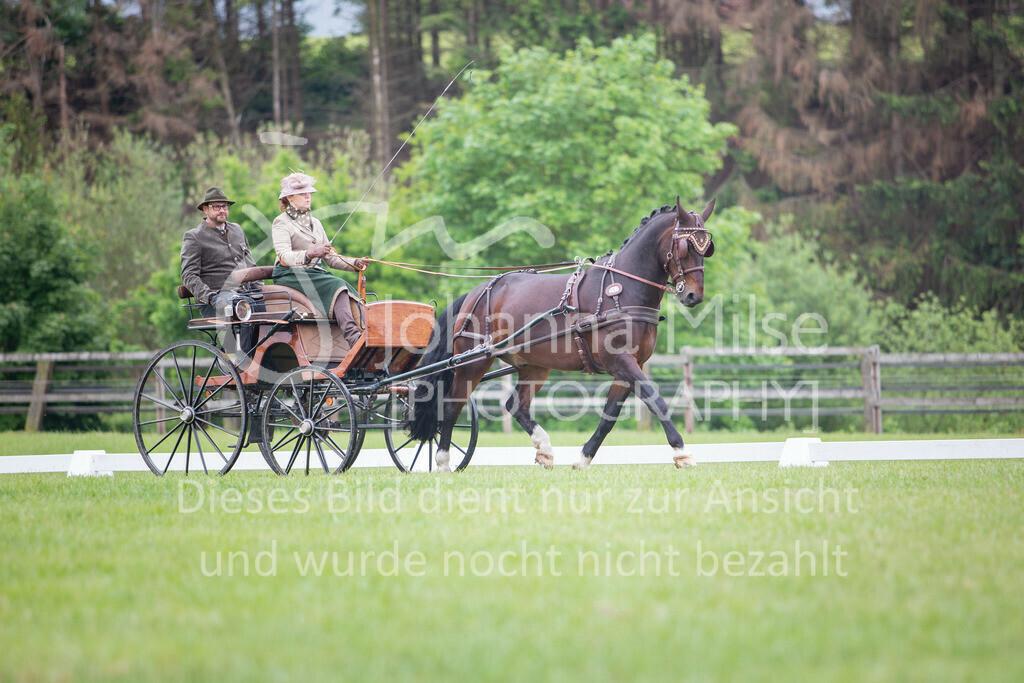 190525_Fahren-021 | Pferdesporttage Herford 2019 Fahren