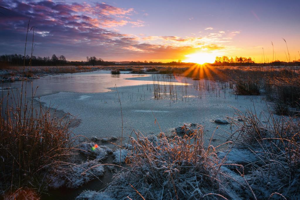 Sonnenaufgang in den Hammewiesen   Winterlicher Sonnenaufgang in den Hammewiesen.