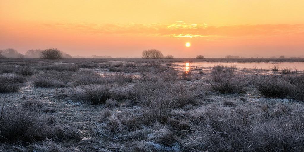 Sonnenaufgang in den Hammewiesen | Ein weiterer toller Sonnenaufgang in den Hammewiesen.