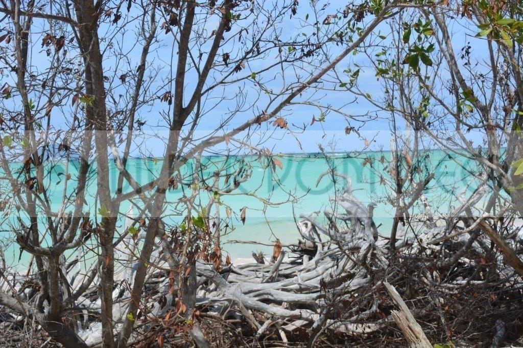 Karibik Bilder vom Meer | Blick aufs Meer in Kuba