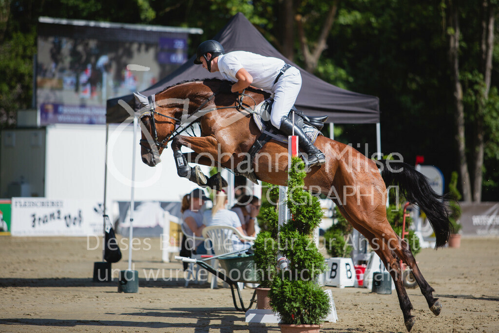 200819_Delbrück_Sprpf-A_1_2-022 | Delbrück Masters 2020 Springpferdeprüfung Kl. A* 4jährige Pferde