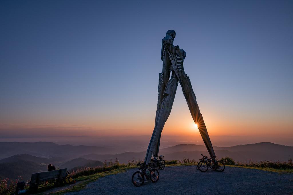 Lothardenkmal | Denkmal an den Sturm Lothar, auf dem Gengenbach Siedigkopf