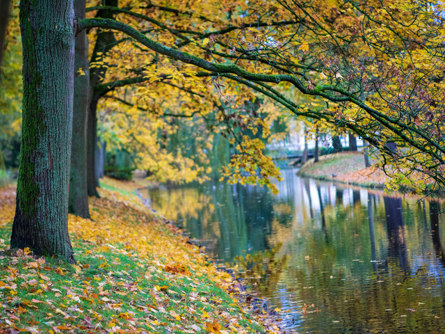 Celle 26.10.2020 (2) | Celle und Umgebung
