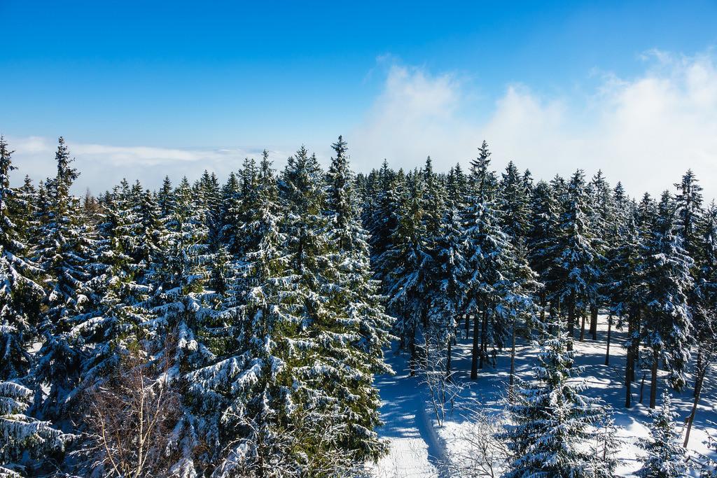 Winter im Riesengebirge bei Benecko, Tschechien | Winter im Riesengebirge bei Benecko, Tschechien.