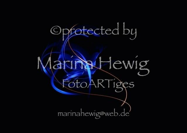 Lightpainting_MarinaHewig Kopie | OLYMPUS DIGITAL CAMERA