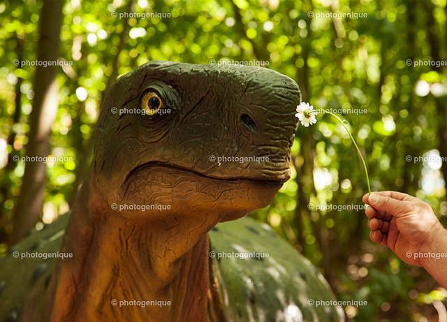 Geburtstagskarte Dinosaurier schnuppert an Blume | Ein Dinosaurier schnuppert an einer weißen Blume, die ihm vor die Nase gehalten wird bei Tageslicht vor einem grünen Hintergrund