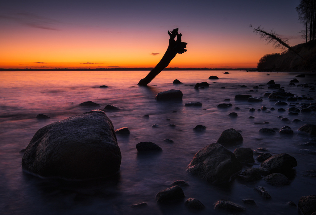 The Spear Tree III | Morgendämmerung über einem toten Baum am Brodtener Ufer bei Travemünde.