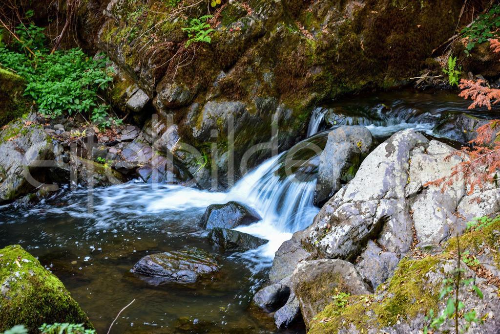Wasserfälle in der Wolfsschlucht | fotografiert bei Manderscheid in der Eifel (Vulkaneifel)