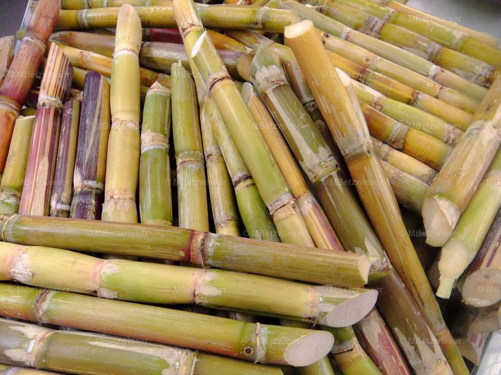DSCF8226 | Caña oder Zuckerrohr Stangen